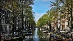 The Belly Of The City – Amsterdam